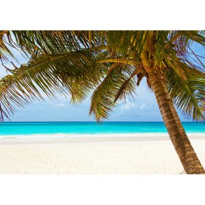 Tropical Beach Photo Poster. NK WORLD