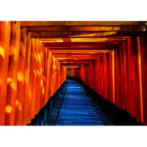 Fushimi Inari-Taisha Photo Poster. NK WORLD
