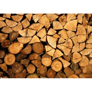Firewood Photo Poster. NK WORLD