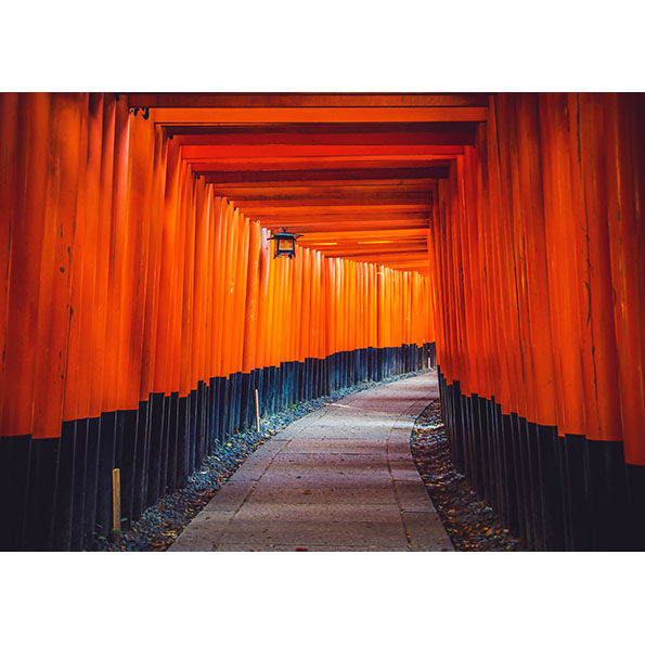 Fushimi Inari Taisha Photo Poster. NK WORLD
