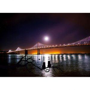 Night Bridge Photo Poster. NK WORLD